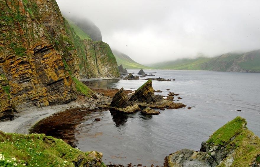 Командорские острова - туры и экскурсии на Камчатке