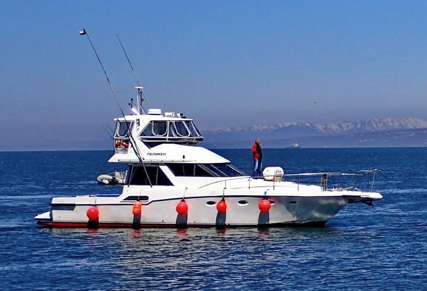 Аренда катера Пеликен с экипажем - цены - туры и экскурсии на Камчатке